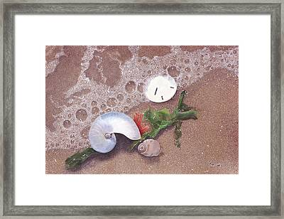 Framed Print featuring the painting At Shore's Edge by Cindy Lee Longhini