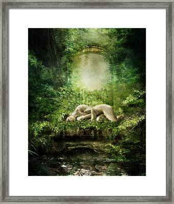 At Sleep Framed Print by Mary Hood