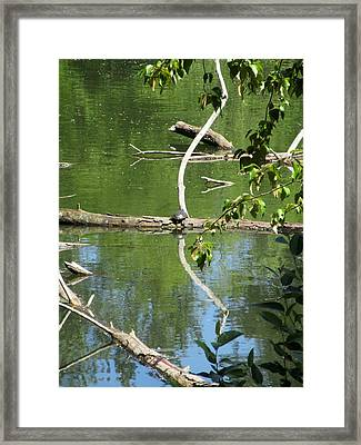 At The Crossroads Framed Print by Marie Neder