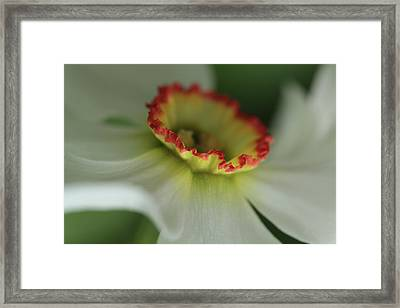 At The Edge Of The Crater Framed Print
