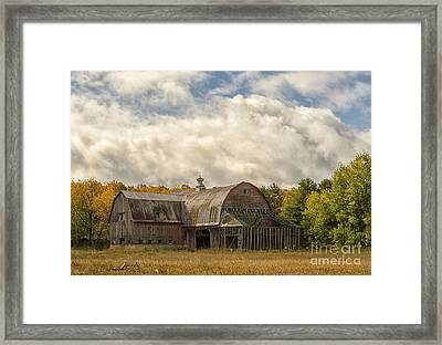 At The Edge Of The Medow Framed Print by JRP Photography