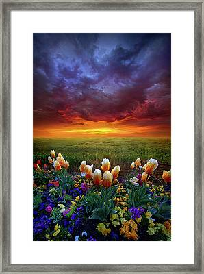 At The End Of Darkness Framed Print by Phil Koch