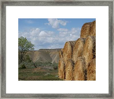 At The End Of Nowhere Road Framed Print by Ernie Echols