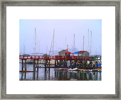 At The Habor Framed Print