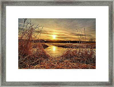 At The Rivers Edge Framed Print