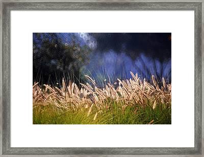 Framed Print featuring the photograph At The Rock Garden Tel Aviv by Dubi Roman
