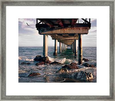 At The Seahore Framed Print by Daniel Hagerman