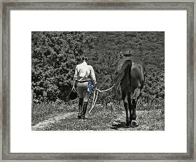 At The Show Blue Ribbon Framed Print by JAMART Photography