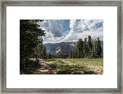At The Top Of The Run Framed Print