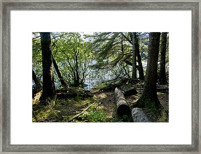 At The Water Edge. Framed Print