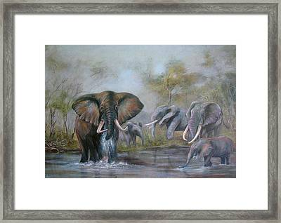 At The Waterhole Framed Print by Rita Palm