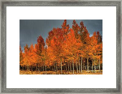 At Their Peak Framed Print