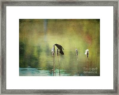 Framed Print featuring the photograph At This Moment by Aimelle