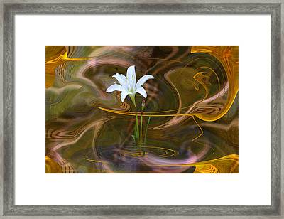 Framed Print featuring the digital art Atamasco Lily In Abstract by rd Erickson