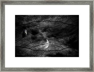 Athena's Bird Framed Print by Lourry Legarde