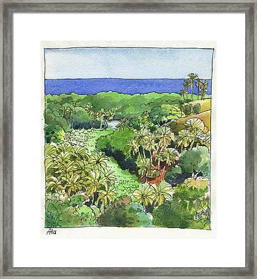 Atiu Lake View Framed Print
