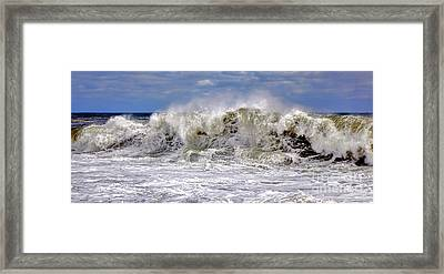 Atlantic Flamenco Framed Print by Olivier Le Queinec