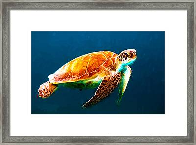 Atlantic Green Sea Turtle Framed Print by Theo Westlake