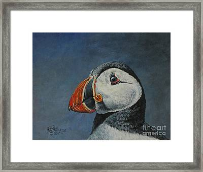 Atlantic Puffin Framed Print