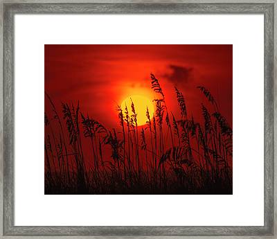 Atlantic Sunrise #2 Framed Print