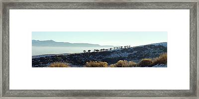 Atop Peavine Mountain Framed Print by Edward Hass