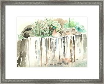 Atop The Waterfall Framed Print by Arline Wagner