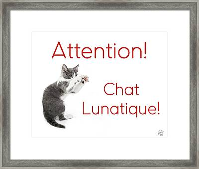 Framed Print featuring the photograph Attention Chat Lunatique by Endre Balogh