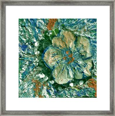Attention Impasto Lovers Framed Print by Anne-Elizabeth Whiteway