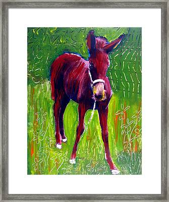 Attitude Framed Print by Michael Ballew