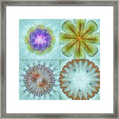 Attitudinal Proportion Flower  Id 16165-113431-66510 Framed Print