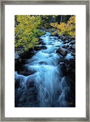 Framed Print featuring the photograph Auatumn On Bishop Creek II by Stuart Gordon