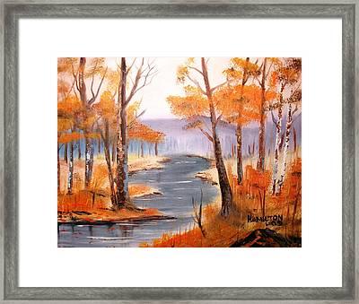 Auburn Forest Framed Print