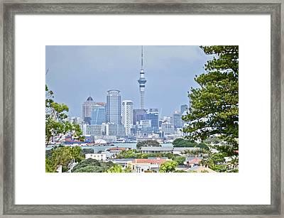 Auckland City C B D Framed Print
