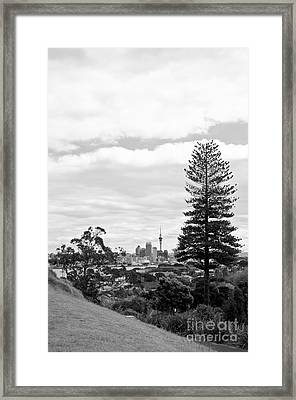 Auckland City New Zealand Framed Print