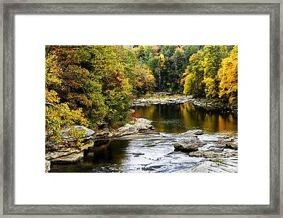 Audra's Autumn Splendor Framed Print by Thomas R Fletcher