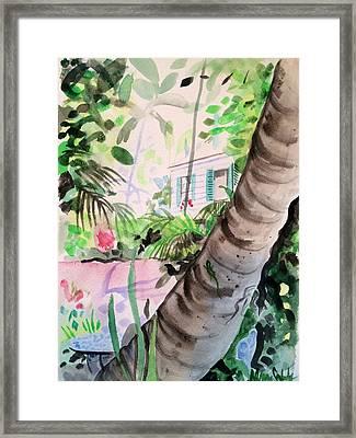 Audubon's Garden Key West  Framed Print by Maggii Sarfaty