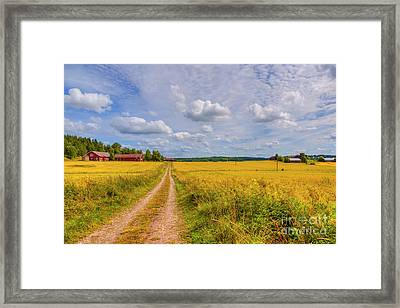 August Countryside Framed Print