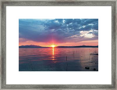 August Eye Framed Print