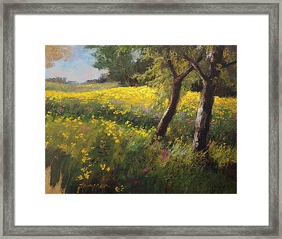 August Flowers Framed Print by Tracie Thompson