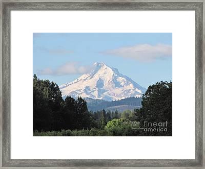 August On Mt Hood  Framed Print