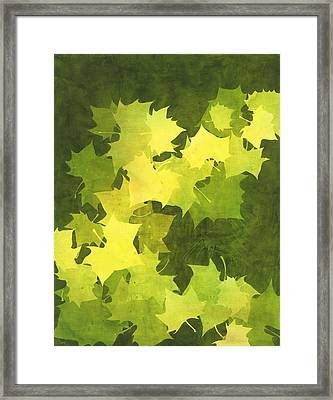 August Sycamore Framed Print