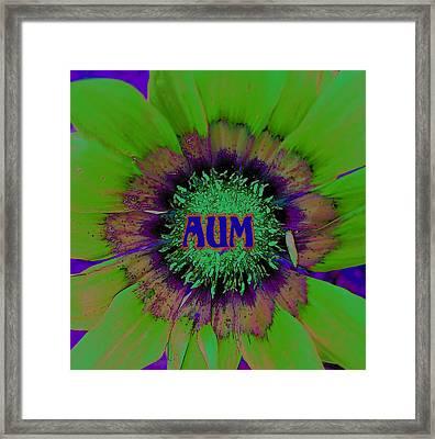 AUM Framed Print by Vijay Sharon Govender