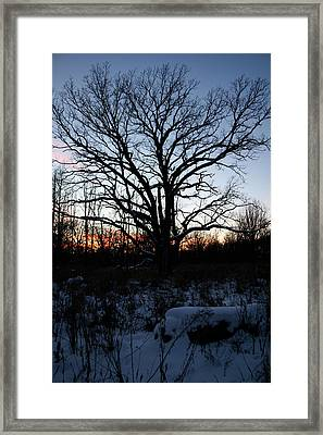 Aura Fc Framed Print