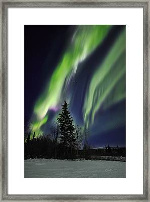 Aurora Grasp Framed Print by Ed Boudreau