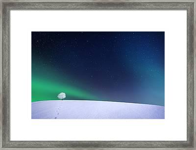 Aurora Framed Print by Bess Hamiti
