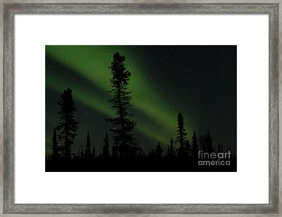 Aurora Borealis The Northern Lights Interior Alaska Framed Print