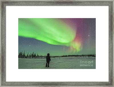 Aurora Borealis With Vega And Arcturus Framed Print by Alan Dyer