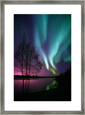 Aurora Display Framed Print