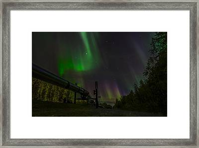 Aurora Over  Trans-alaska Pipeline Framed Print by Robin Williams