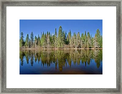 Framed Print featuring the photograph Ausable Reflections 1768 by Michael Peychich